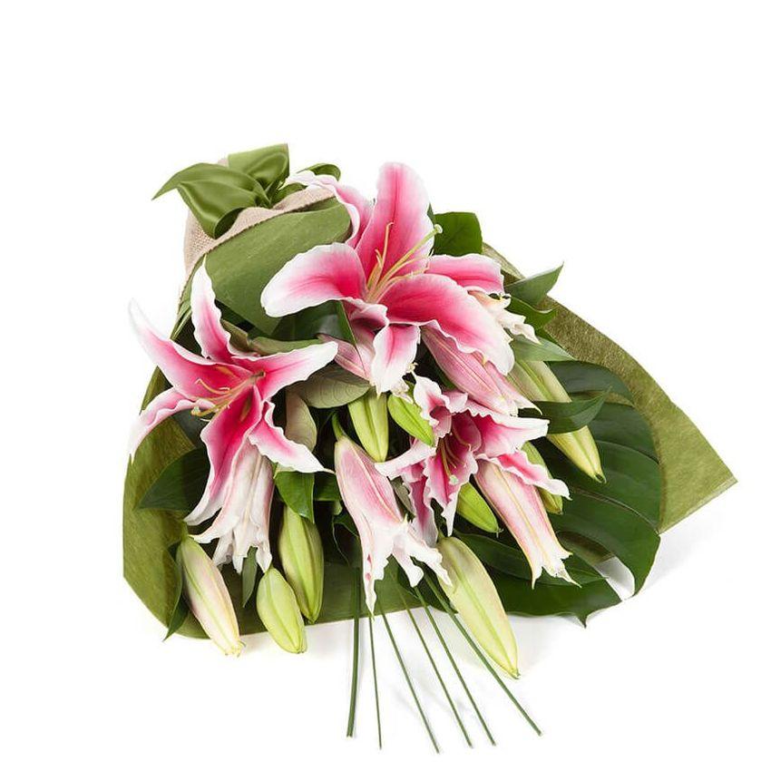 Oriental Lilies - In Vogue Pink (5)