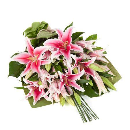Oriental Lilies - In Vogue Pink (10)