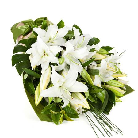 Oriental Lilies - In Vogue White (10)