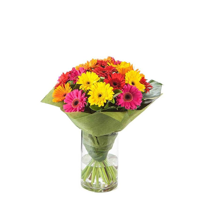 Gerberas - Colour Burst In Glass Vase