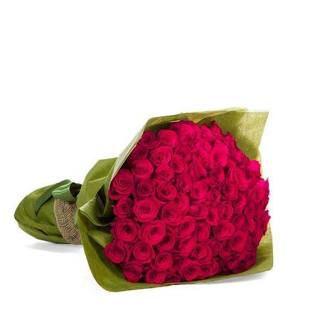 Roses - Enchantment