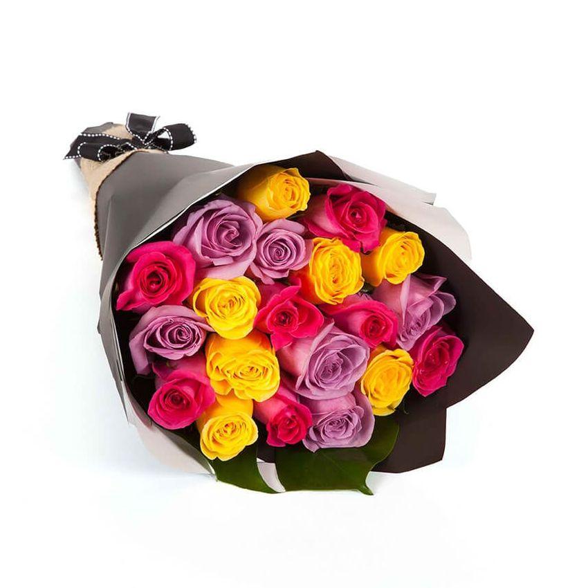 Roses - Festivity (20)