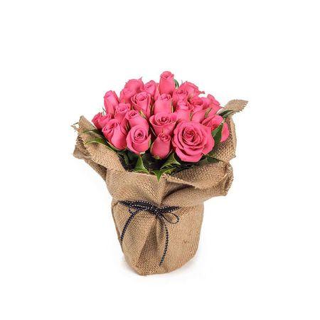Roses - Sweet Delight