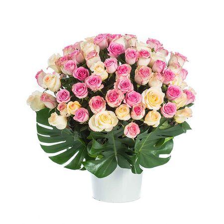 Roses - Sweet Love