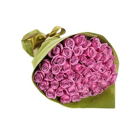 Roses - Violet Love