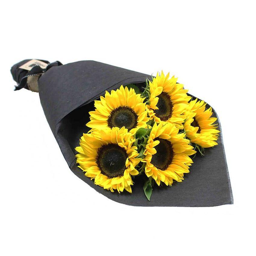 Sunflowers - Sunrise (5)