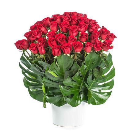 Roses - True Love
