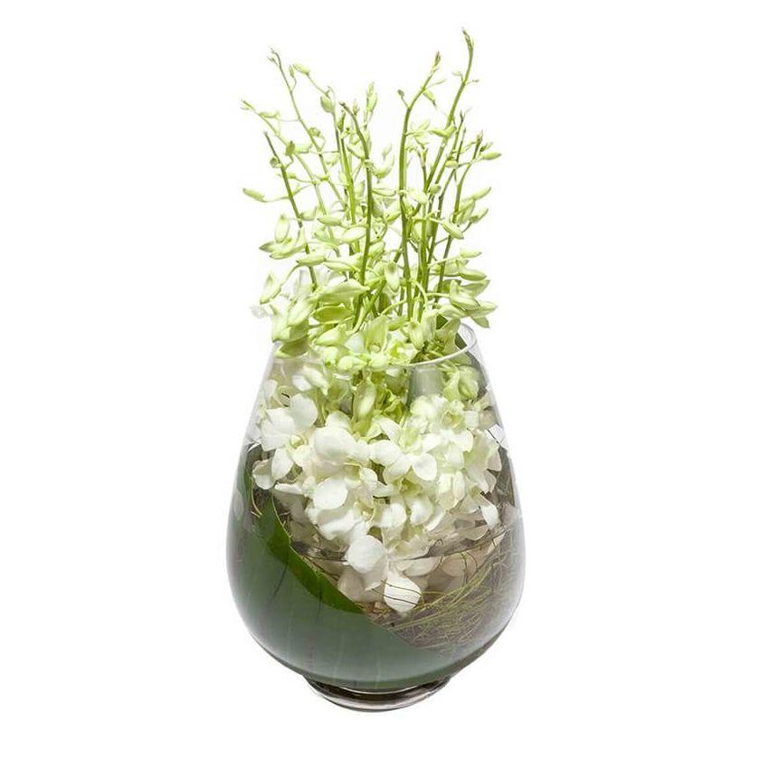 Zen- Orchids (15)