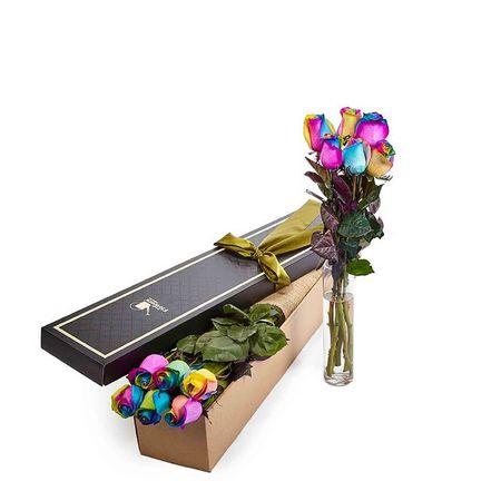 Roses - Rainbow- 6 Stems