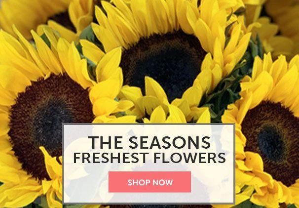 Seasons Best Flowers