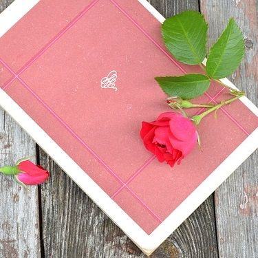 Red Roses with pink card